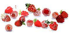 Margaret Berg : summer / fruit fun