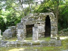 San Gervasio Mayan Ruins - Cozumel, Mexico