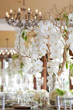 amazing orchids and manzanita by Karen Tran Florals