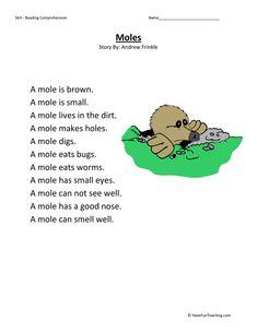 First Grade Activities, Teaching First Grade, Teaching Kindergarten, Teaching Reading, Reading Comprehension Worksheets, Reading Fluency, Reading Strategies, Reading Skills, 6th Grade Reading
