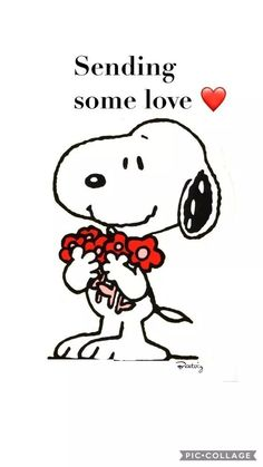 You are amazing just the way you are!- Nellita Sending some Love. Snoopy sayings valentines Hug Quotes, Snoopy Quotes, Valentine's Day Quotes, Funny Quotes, Cartoon Quotes, Snoopy Love, Snoopy And Woodstock, Charlie Brown Und Snoopy, Charlie Brown Quotes
