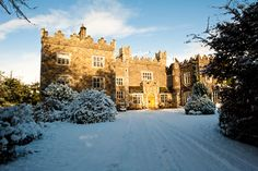 Enjoy festive vibes at Waterford Castle Hotel and Golf Resort during the Christmas season! Waterford Castle, Winter Season, Winter Wonderland, Festive, Golf, Seasons, Island, Mansions, House Styles