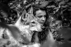 Shooting chien loup