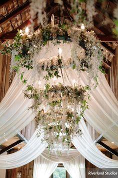Wildflowers inc wildflowersinc on pinterest wedding planning wedding design and wedding decor team of experienced professionals in charleston sc junglespirit Choice Image
