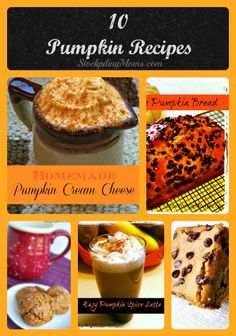 Our favorite recipes for autumn.  You can't go wrong with these great pumpkin recipes!