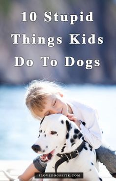 The following are 10 things that children do to dogs that are not only stupid, but could cause a hazardous situation. 1. Run and Scream. 2. Pull ears or tails. 3. Come Up From Behind. 4. Steal Toys or Food. 5. Improperly Carrying Small Dogs Around. 6. Approach a Strange Dog Without Permission. 7. Face to Face. 8. Drag Them by The Leash 9. Wake Them. 10. Touch Their Heads Roughly.