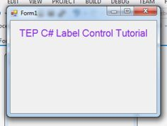 Hey everyone hope you are doing well, in this article I will guide you about the C# Label Control. Mean how you can deal with the label in C Sharp I Will Show You, You Can Do Anything, C Sharp Programming, C Tutorials, Give Directions, Simple Words, Software Development, Just Giving, When Someone
