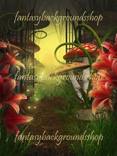 """""""Mashroom land"""" is a collection of 5 fantasy backgrounds"""