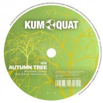 Stream Autumn Tree, a playlist by KUMQUAT from desktop or your mobile device Autumn Trees, Fall Trees