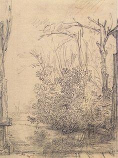 Rembrandt Bomen