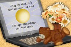 Ich grüß' dich lieb und wünsch' dir was: Sonnige Pfingsttage und viel Spaß! Postkarte zu Pfingsten mit Djabbi Teddy am Laptop