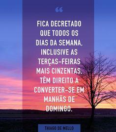 #frase #bemestar #thiagodemello