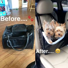 DIY dog car seat made from an old suitcase I got at goodwill and some scrap fabric total cost $2.99
