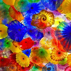 Photography @ http://www.etsy.com/listing/89988753/hand-blown-glass-blossoms-bellagio?utm_source=Pinterest_medium=PageTools_campaign=Share