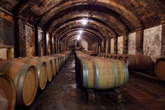winery, Montespertoli, Tuscany Tuscany Vineyard, America Continent, Chianti Wine, Wine Making, New Hampshire, Continents, Wanderlust