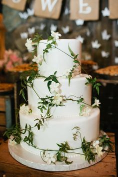 Simple elegance of wrapping a cake in jasmine flowers = beautiful! White and green wedding cake by vanilla bake shop. Green Wedding, Wedding Colors, Wedding Day, Daisy Wedding, Wedding Bride, Wedding Reception, Wedding Flowers, Pretty Cakes, Beautiful Cakes