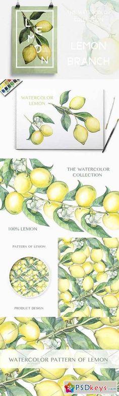 Watercolor lemon branches 287036