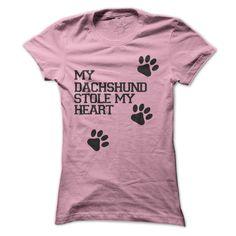 My Dachshund Stole My Heart T-Shirts, Hoodies. CHECK PRICE ==►…