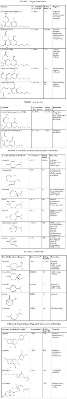 Cannabinoid Facts (THC, CBG, CBC, THCV, CBD, CBN)