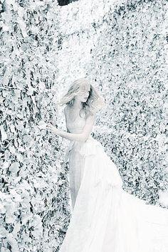 ♥ ✿⊱╮♥ White as Snow ✿⊱╮♥