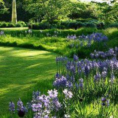Angela Collins Garden Design