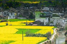 Photograph An ancient village's spring by Jay Z on 500px