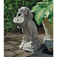 Man's Best Friend Dog Statue by Design Toscano. Save 62 Off!. $49.95. Stone finish. Cast in quality designer resin. Design Toscano exclusive. EU1379 Features: -Cast in quality designer resin. Color/Finish: -Antique stone finish.