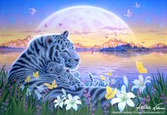 Gallery Bigcats - Art of Kentaro Nishino