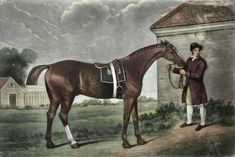 Famous Equestrian Paintings and Drawings; Horse Racing and The Horse in Art