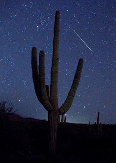 The Arizona night sky was something I'll never forget...