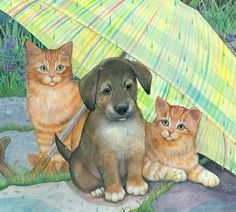 Amy Rosenberg Dog And Cats Under The Umbrella