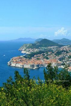 Dubrovnik,Croatia Cruise Travel, Solo Travel, Best Places To Travel, Places To Go, Cavtat Croatia, Places Around The World, Around The Worlds, Critics Choice, Dubrovnik Croatia