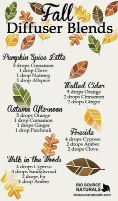 comforting smell of fall in your house with these delicious fall diffuser blends! MoreGet the comforting smell of fall in your house with these delicious fall diffuser blends! Essential Oil Diffuser Blends, Essential Oil Uses, Doterra Essential Oils, Young Living Oils, Young Living Essential Oils, Pot Pourri, Diffuser Recipes, Home Scents, Handmade Soaps