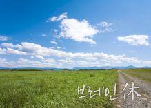 단월드 힐링>아름다운 동행을 위해,  브레인 휴休 명상 - 대한민국 두뇌포털 브레인월드
