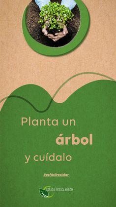 Propósito ambiental. Planta un árbol y cuídalo. #EsFácilReciclar #UnaAccionUnMundo #PequeñasAcciones #DefiendeAlMundo #MiMundo #OneEarth #3R #Recicla #Reusa #Reduce #Reciclaje #SomosHeroes #Tierra