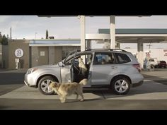 Follow the Barkleys as they pull over for refreshments. http://subaru.com/dogs