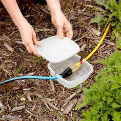 If you're having a party or some other event in the yard and you need additional electricity sources, here's a great way to keep extension cord plugs dry. Cut notches in the opposite sides of a reusable plastic container and snap on the lid. Your plugs will stay dry if it happens to rain or the ground is moist.