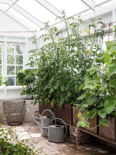 Landscaping With Rocks - How You Can Use Rocks Thoroughly Within Your Landscape Style Made In Persbo Winter Greenhouse, Greenhouse Shed, Portable Greenhouse, Small Greenhouse, Greenhouse Gardening, Container Gardening, Painting The Roses Red, Building Raised Garden Beds, Potting Sheds