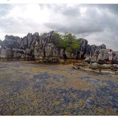 Laguna Guaniquilla, Cabo Rojo. Foto suministrada por @felizmendoza  #backpackingpr #lagunaguaniquilla #caborojopr #caborojobpr #isladelencanto #turismointerno #puertorico #NODEJESBASURA #Padgram