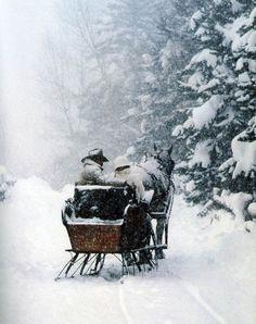 veel sneeuw en paarden