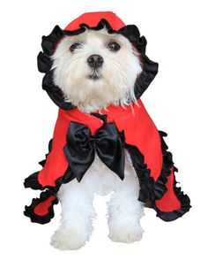 Little Red Riding Hood Pet Costume - Fairy Tale Dog Costumes