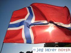 Den norske flagg
