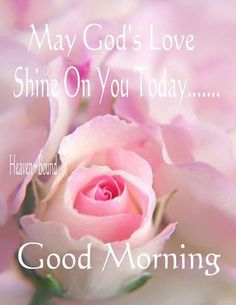May Gods love shine on you today.