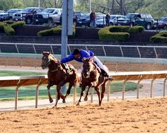 A Charles Town outrider catches Tup Take Please following the 4th race on April 20, 2013.