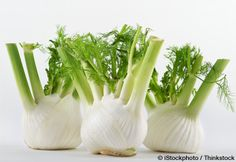 Learn more about fennel nutrition facts, health benefits, healthy recipes, and other fun facts to enrich your diet. http://foodfacts.mercola.com/fennel.html