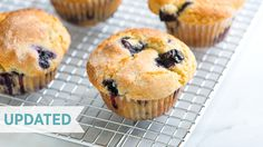 Quick and Easy Blueberry Muffin Recipe - How to Make The Best Homemade Blueberry Muffins - Updated - YouTube