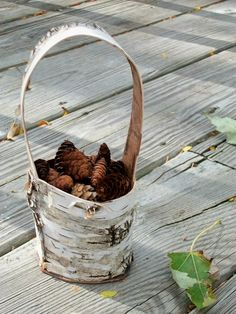 Love this birch basket!