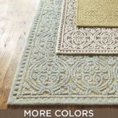 Although you cant see it that well, I would like this rug in GOLD (5x8).  It would complete my living room because it's a little traditional and modern.  I could see this rug complementing different types of style choices and home decor...