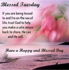 Good Morning Day Night Quotes Pics And Videos. likes. Good Morning Day Night Quotes Pics And Videos Day And Night Quotes, Tuesday Quotes Good Morning, Day For Night, Tuesday Greetings, Happy Tuesday, Faith Is The Substance, Now Faith Is, Was Ist Pinterest, Days Of Our Lives