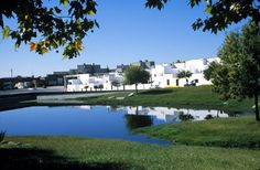 Quinta da Malagueira // Houses seen across the pond and open spaces between housing groups.